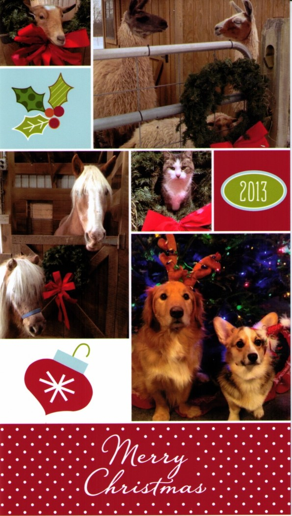 Christmas wishes from Dr Brown's menagerie!